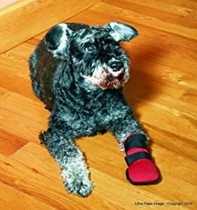 Amazon Com Ultra Paws Wound Boot Dog Paw Width 2 3 4