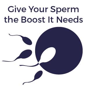 FertilAid, increase sperm count, boost sperm, sperm health, male fertility, male infertility