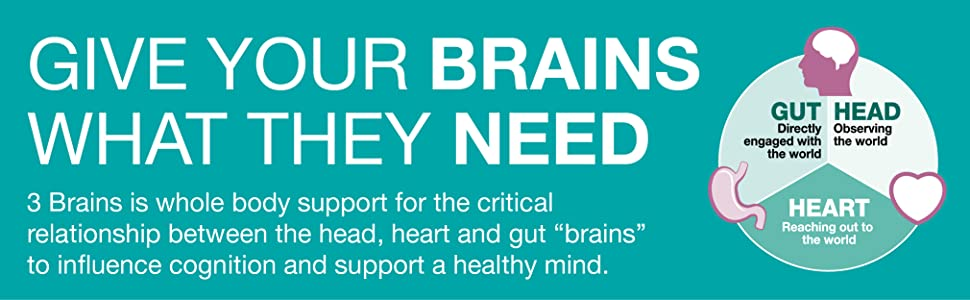 Give your brains what they need