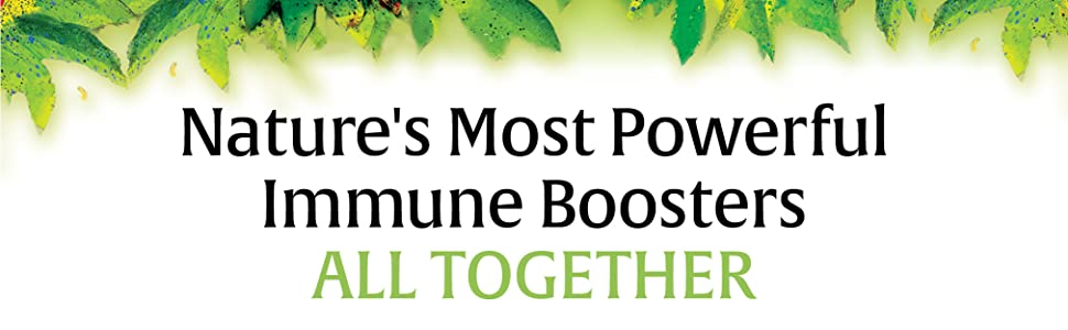 Nature's Most Powerful Immune Boosters All Together