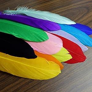 Amazon Com 120 Plumas De Ganso Coloridas Para Manualidades Joyería Bodas Decoración Del Hogar O Fiesta 12 Colores 15 2 A 8 0 In Arte Manualidades Y Costura