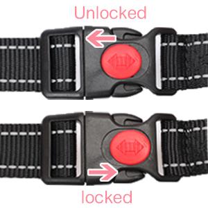 Lockable Snap Buckles