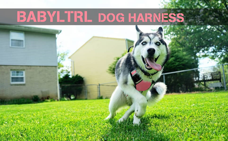 BABYLTRL Big Dog Harness No Pull Adjustable