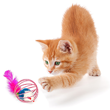 upsimples Cat Toys Including Cat Teaser Wand Interactive Feather Toy Fluffy Mouse Mylar Crinkle Balls Catnip Pillow for Kitten Kitty 24