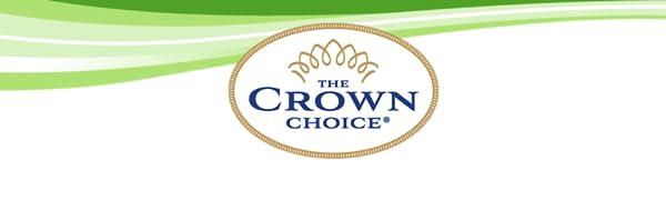 THE CROWN CHOICE NO FALL SPONGE HOLDER