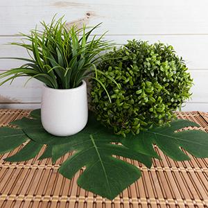 fab6ac88b930c Amazon.com  Super Z Outlet Tropical Imitation Plant Leaves 8 ...