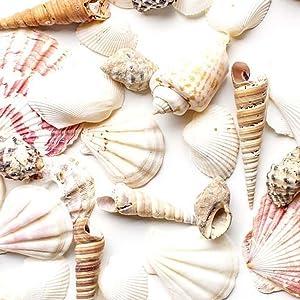Pink and brown sea shell print wristlet