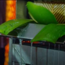 Aloe Vera 100% Pure Organic Natural Gel Green Vegan Plant Gel Juice Lotion Cream Men Women Skin
