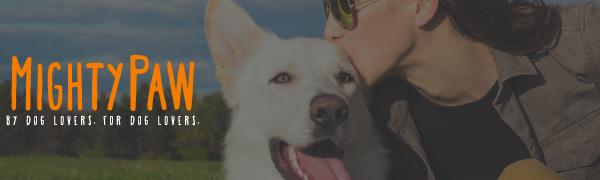 Martingale Dog Collar Training no pull no-pull chain choke cinch slip feedback cue leash walk