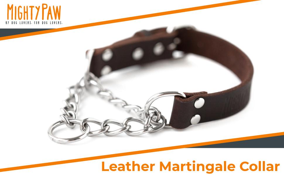 Leather Martingale Collar Training