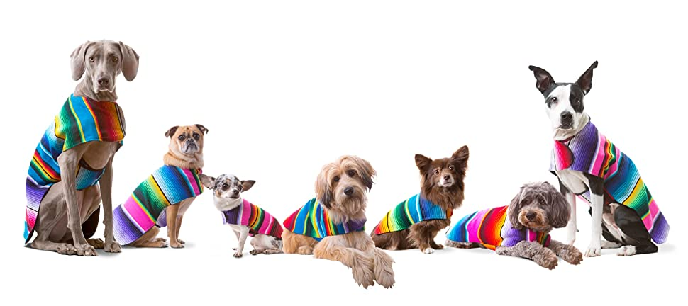 Handmade Dog Poncho from Mexican Serape Blanket - Dog Clothes - Coat - Costume - Sweater - Vest 56