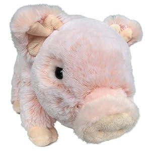 pig piggy