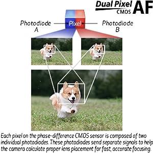 canon eos sl3 cmos dual pixel cmos
