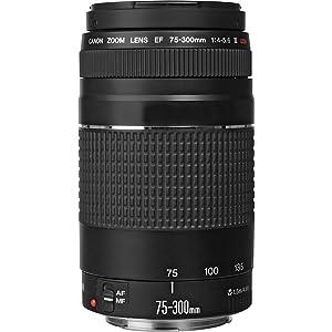 canon 75-300 f4 telephoto zoom lens accessory