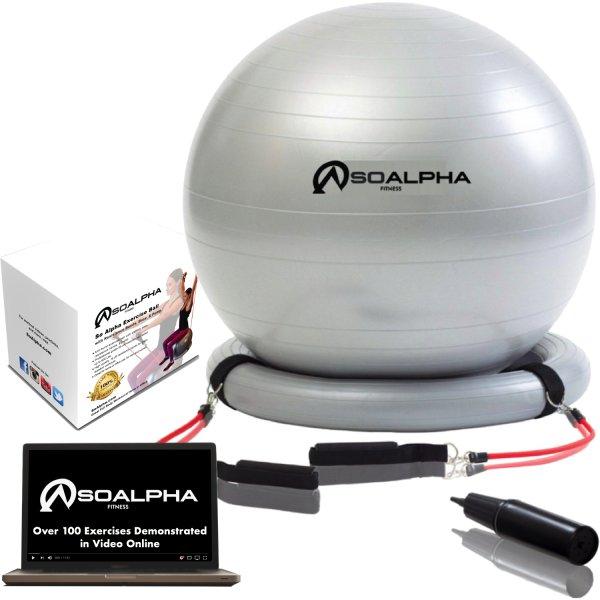 Training Bands Near Me: Amazon.com: SoAlpha Premium Exercise Ball With 15LB