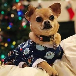 cutebone dog pjs