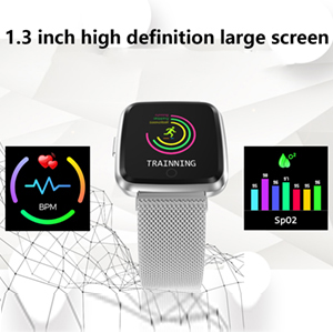 1.3 inch screen