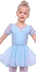 Girls Ballet Leotard Dress