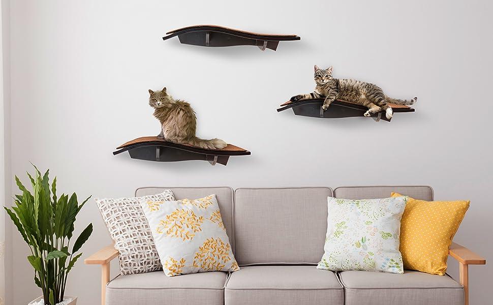 cat wall perch