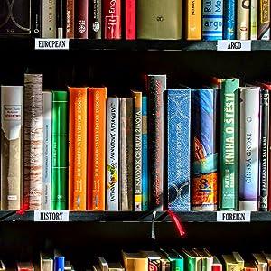 Book Shelf Label Holding Solution