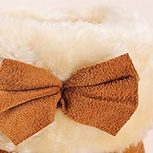 Lovely Bowknot