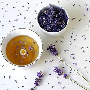 lavender flowers tea