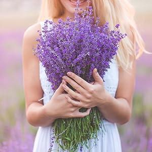 Kate Naturals Organic Lavender Flowers