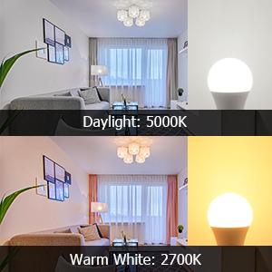 a15 light bulb 2700K and 5000K