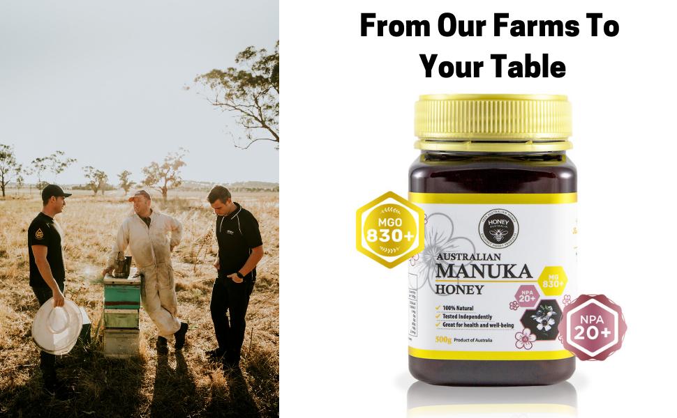 Manuka Honey MGO 830+ UMF NPA 20+ Australian Honey Australia