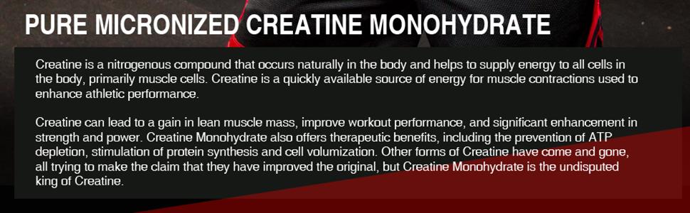 pure micronized creatine monohydrate