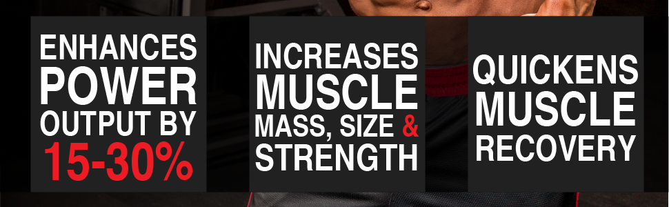 creatine enhanced power output increased muscle strength mass quick recovery