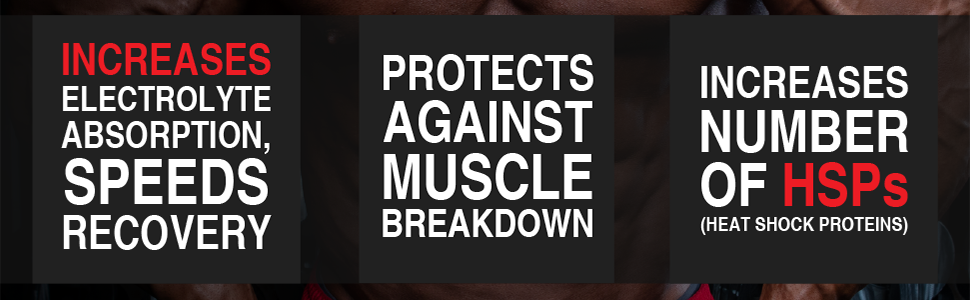 increase electrolyte absorption increase recovery protect muscles breakdown