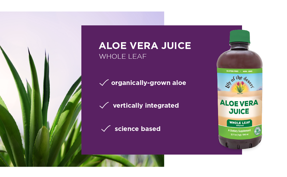 aloe vera juice whole leaf lily of the desert soothing