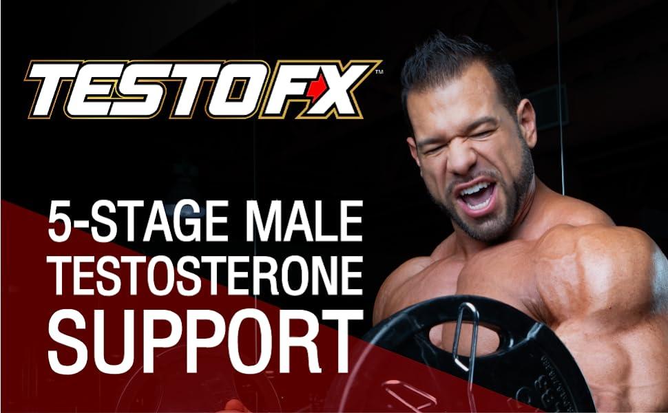 testofx male testosterone support supplement allmax