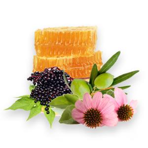 wellness ingredients herbs antioxidants