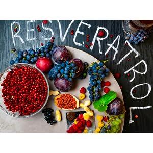 resveratrol berries antioxidant