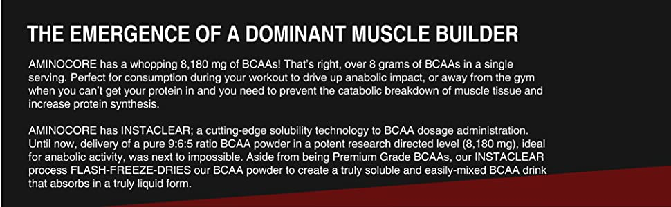 muscle builder aminocore bcaas