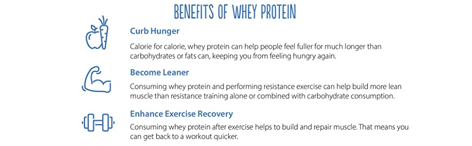 teras whey benefits of whey protein curb hunger become leaner enhance exercise recovery