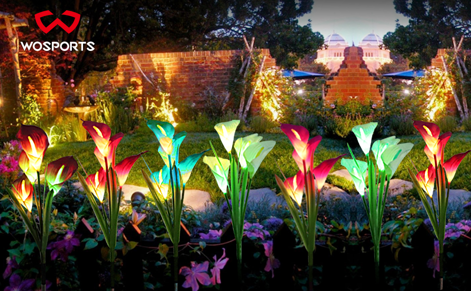 güneş çiçek ışıkları