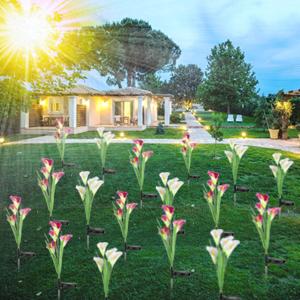 çiçek ışıkları açık