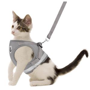 gray cat harness