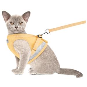 cream cat harness