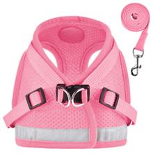 cat harness pink
