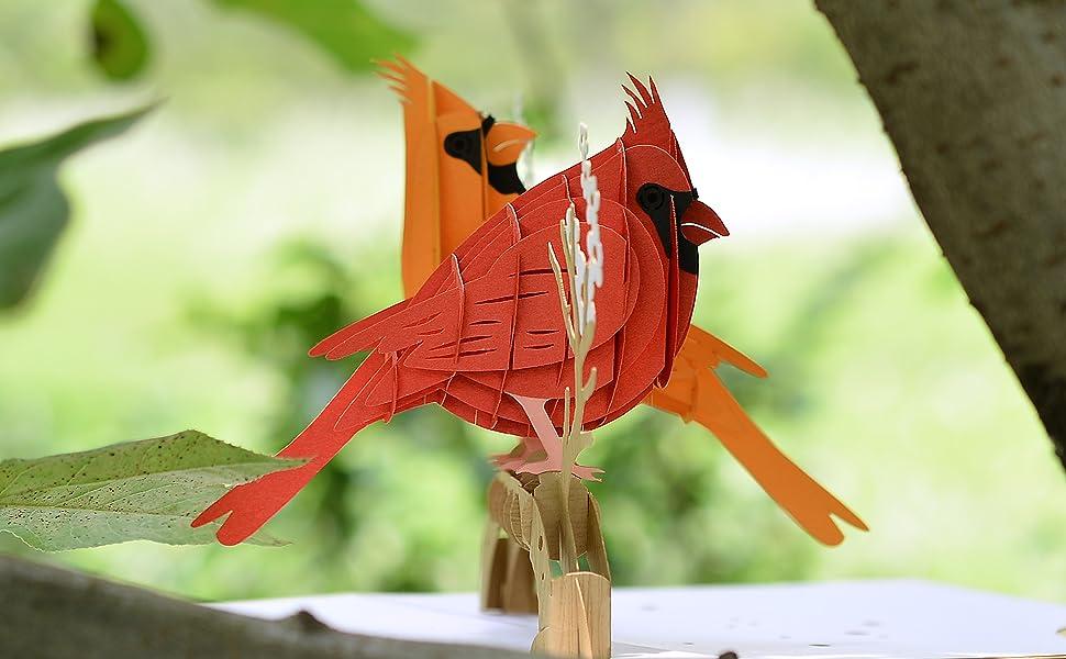 Cardinal Birds for Life Pop Up Card