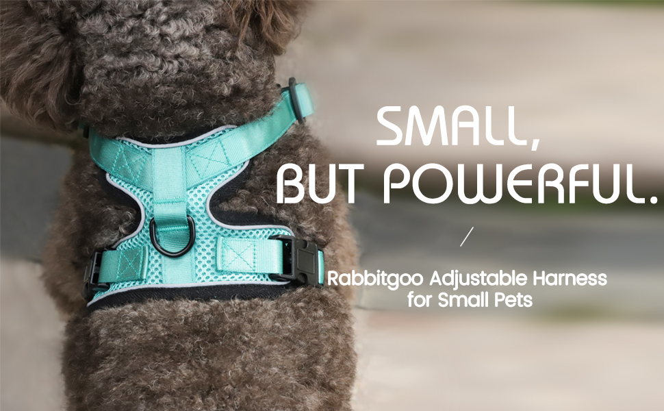 escape proof cat dog harness for small animals pets vest soft harness dog cat jacket outdoor walking