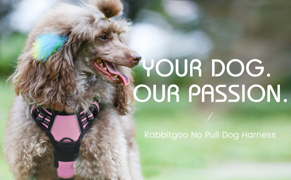 Dog Harness No-Pull Pet Harness Adjustable Outdoor Pet Vest