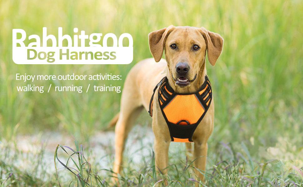 dog harness for pets dog vest harness pet vest for dogs