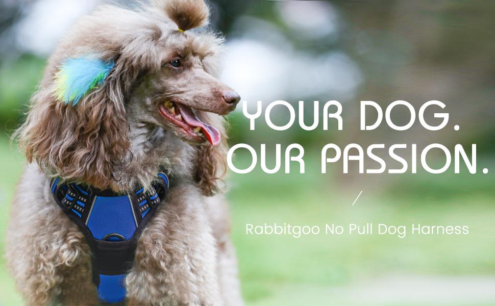 Rabbitgoo Dog Harness No-Pull Pet Harness Adjustable Outdoor Pet Vest