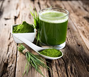 Image result for Wheat grass juice