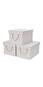 storage bin with lid